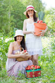 Happy women with harvested vegetables — Stock Photo