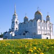 Assumption cathedral  at Vladimir in summer - Foto de Stock