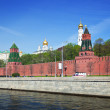Kind to the Moscow Kremlin — Stock Photo #11500383