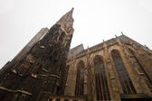 St. Stephen's Cathedral in Vienna — Foto Stock
