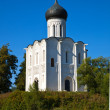 Church of the Intercession on River Nerl — Stock Photo #12488215