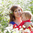 Stock Photo: Mother and baby in blossoming garden