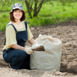 Woman fertilizes  soil - Stock Photo