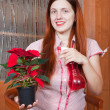 Stock Photo: Young womwith Poinsettiflowers