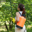 Female gardener with knapsack garden spray — Stock Photo #12495781