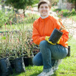 Stock Photo: Gardener chooses bush sprouts