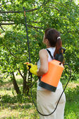 Female gardener with knapsack garden spray — Stock Photo