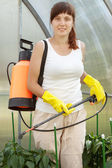 Female gardener spraying pepper plant — Foto de Stock