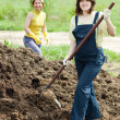 Women works with animal manure - Photo