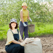 Gardeners fertilizes the soil - Photo