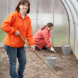 Stock Photo: Women works at hothouse