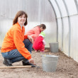 Family works in greenhouse - Stock Photo