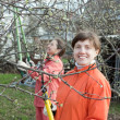 Women pruned branches in  orchard - Stock Photo