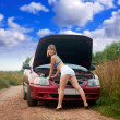 Sexy womtrying to fix car — Stock Photo #12502822