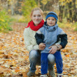 Mother with boy in autumn park — Stock Photo #12510809