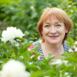 Happy mature woman in peony plant — Stock Photo
