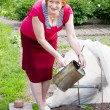 Stock Photo: Mature womworking with hothouse