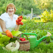 Stock Photo: Happy mature womwith vegetables