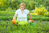 Woman working in field of carrot — Stock Photo