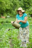 Volwassen vrouw drenken groenten — Stockfoto