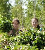 Kobiety co gałęzie brzozy — Zdjęcie stockowe