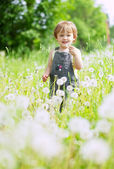 Two-year girl in dandelion plant — Stock Photo