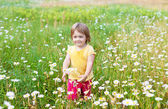 Two-year child in meadow — Stock Photo