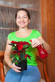 Woman with Poinsettia — Stock Photo