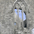 Kilmacduagh monastery - Stock Photo