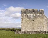 Kilmacduagh monastery — Stock Photo