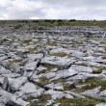 The Burren Landscape — Stock Photo #11163621