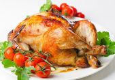 鸡和西红柿 — 图库照片