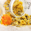 Calendula - medicinal herbs on wooden table — Stock Photo