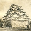 Castle in Nagoya — Stock Photo #11864516