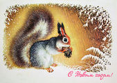 Squirrel with knob — Foto Stock