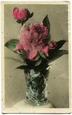 Vuntage postcard — Stock Photo