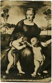 Raffaelle - マドンナ ・ デル ・ cardellino、gallerie ウフィツィ美術館、ポーランド, 190 — ストック写真