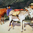 VENEZUELA - CIRCA 1960: Reproduction of antique postcard shows Two boy with donkeys, circa 1960 — Stock Photo #11871075