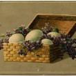 Basket with eggs and flowers — Stockfoto #11873129