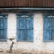 Old windows with shutters — Stock Photo #11876595