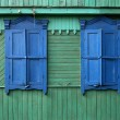 Two blue windows on a green wall — Stock Photo