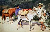 Венесуэла - около 1960: воспроизводство антикварной открытка показывает два мальчика с ослами, около 1960 — Стоковое фото