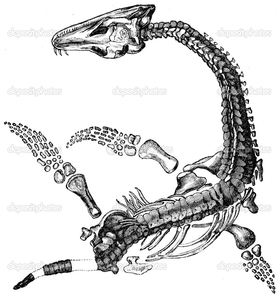 Plesiosaurus macrocephalus - Jurastic fossil organisms, encyclopedia Education, Russia, 1896 — Stock Photo #11877016