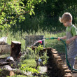 Little boy watering plants in the garden — Stock Photo