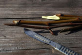 接木ナイフと古い veathered の木製テーブルの上のうそのための pear 挿し木 — ストック写真