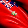 Flag of Manitoba, Canada. — Stock Photo #10785710