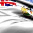 Flag of British Antarctic Territory — Stock Photo