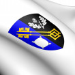 Surrey Coat of Arms, England. — Stock Photo #11336560