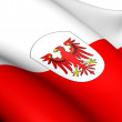 Flag of Tyrol, Austria. — Stock Photo