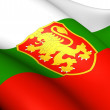 Flag of Bulgaria — Stock Photo #11685335